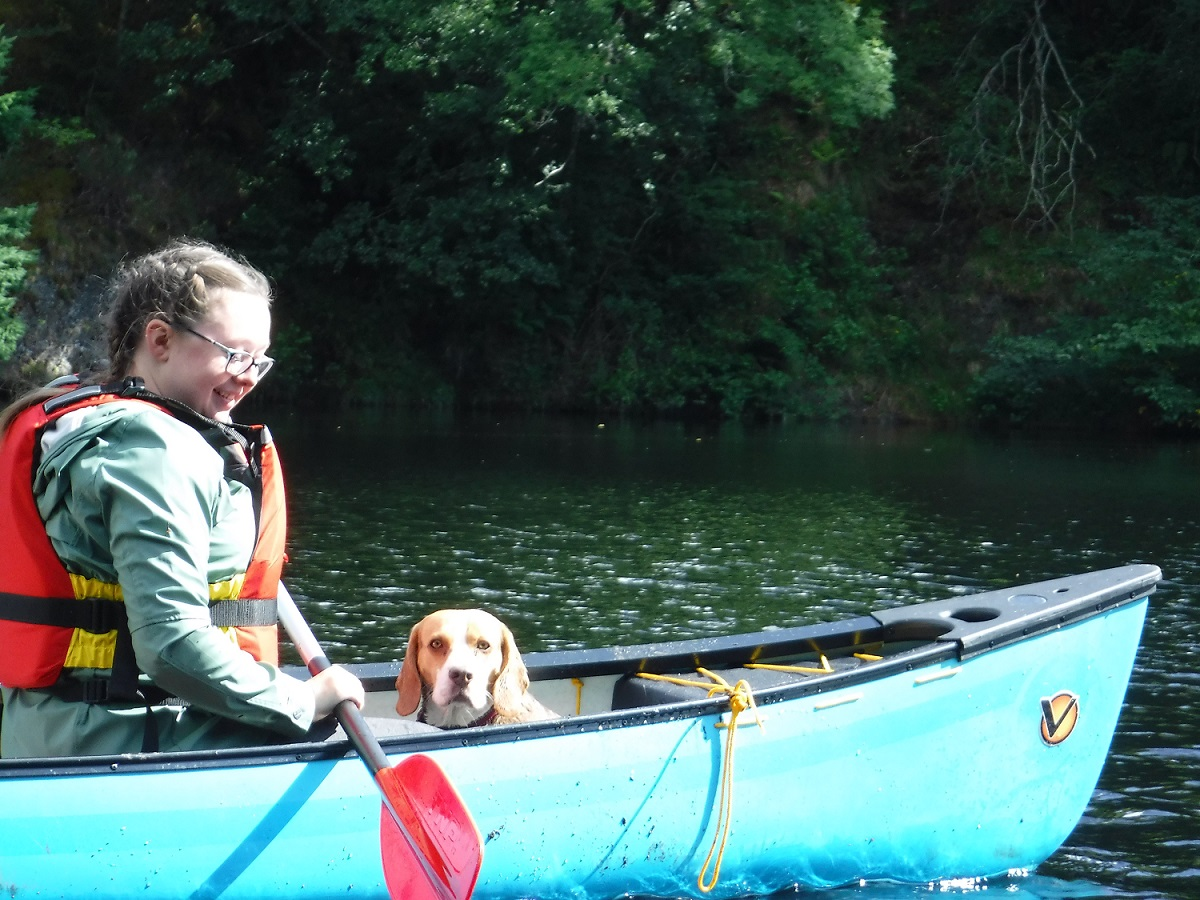 Dog in a canoe